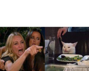 polosan meme kucing vs wanita