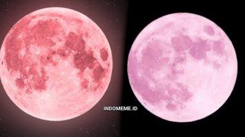 Pink Supermoon April 2021